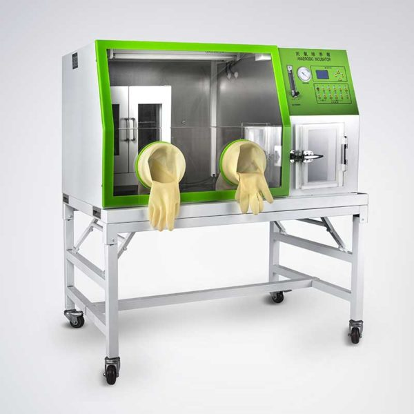 LAI-3 Anaerobic Incubator