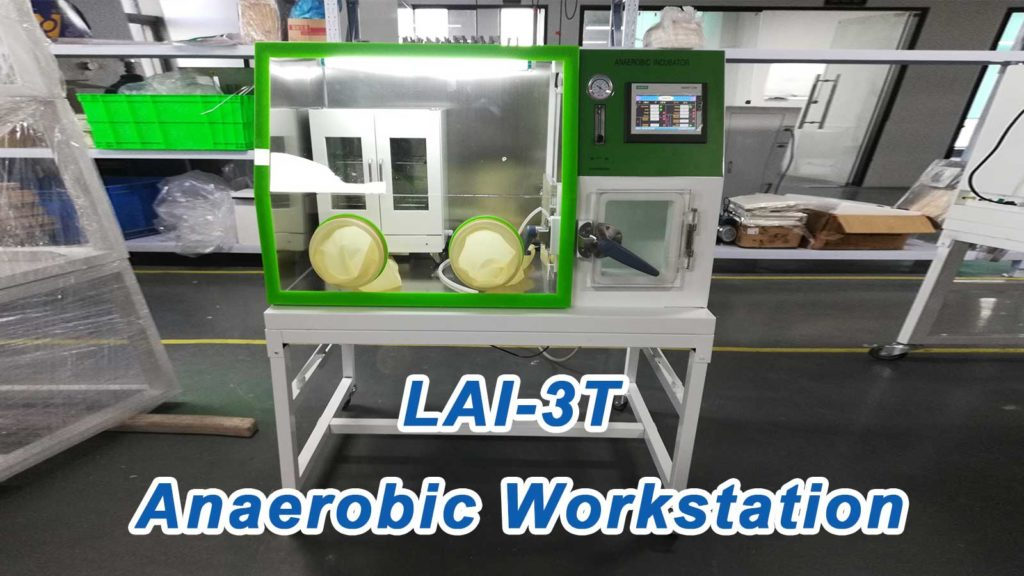 Anaerobic Workstation